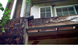 Remcodeacon Gt Portfolio Gt Sammamish Hills Condominiums